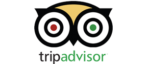 tripadvisor reviews link